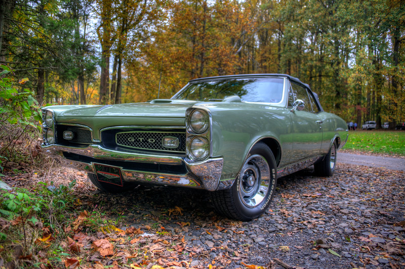GTO in the fall