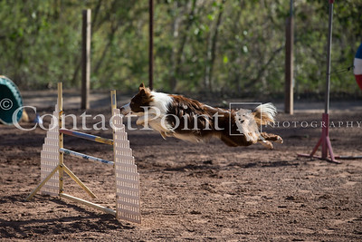 Contact Point Agility - March 2, 2013