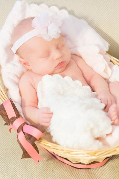 ELP0612 Baby Adeline Clermont Newborn 324.jpg