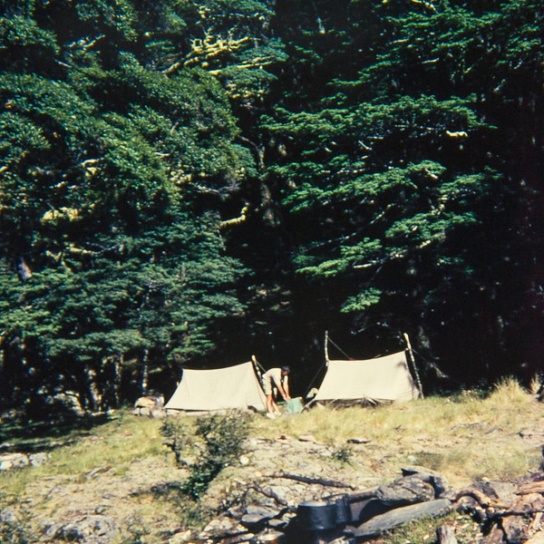 1954 campsite up the Hopkins River.jpg