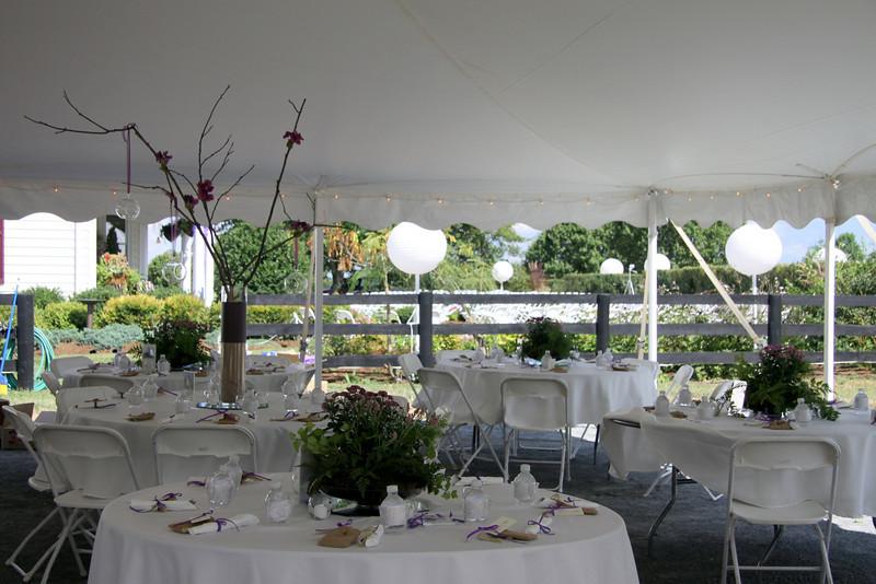 Standley ~ Kohut Wedding