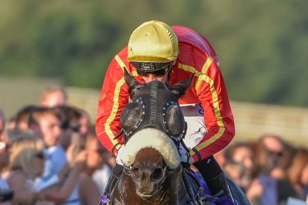 The Sky Bet Go Racing In Yorkshire Summer Festival Handicap Stakes