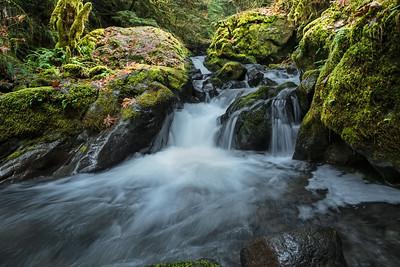 Nature / Landscapes / Scenics
