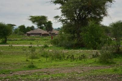 1494239968African-Safari-4.jpg