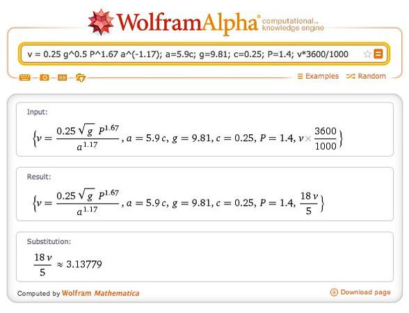 Salema dino Wolfram.jpg