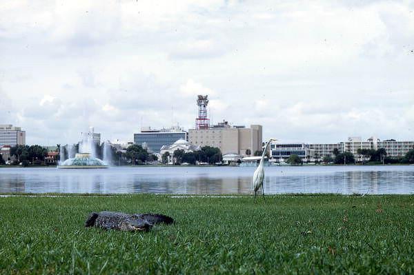 Orlando 1969.jpg