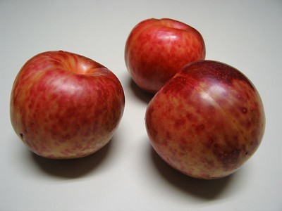 Plums, Apricots, Plumcots, Pluots®, and Apriums®