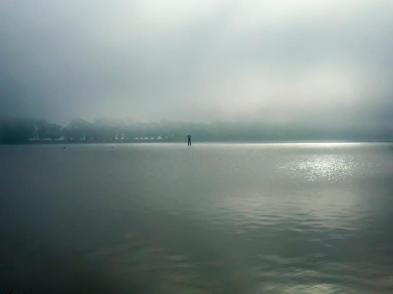 Foggy Morning in Rio Vista.jpg