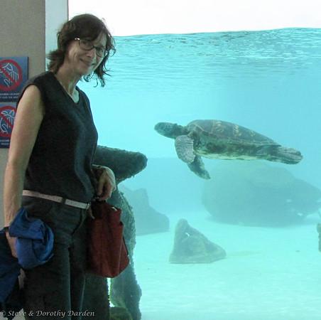 Nouméa Aquarium