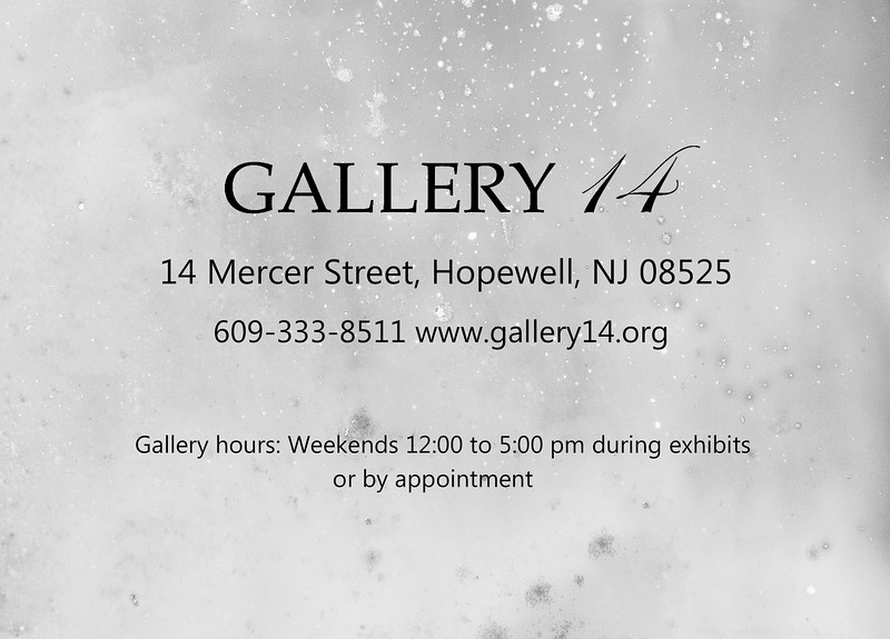 Gallery14 cover 2.jpg