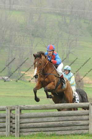 Steeplechase and Point to Point Races