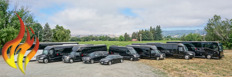 California Wine Tours Fleet