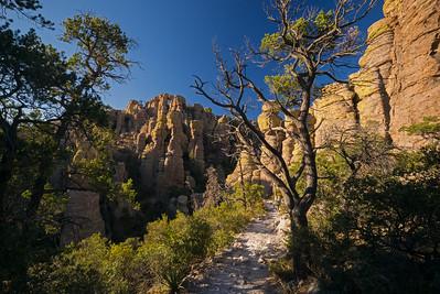 Arizona & New Mexico