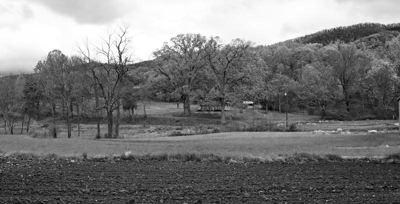 Greeneville Tenn Presley Farm April 2016_10 BW.jpg