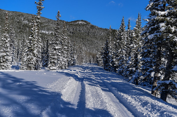 11-19-15 Winter