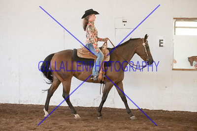 ARS 150726 Western