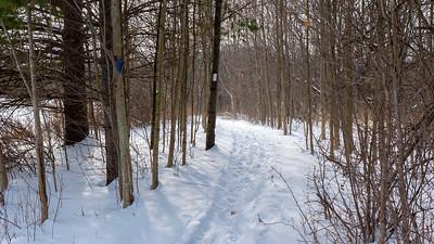 Bruce Trail Hike #8: Short Hills Provincial Park