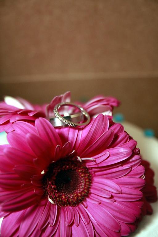 RHEA-BOYER WEDDING - THE FORMAL WEDDING PORTRAITS