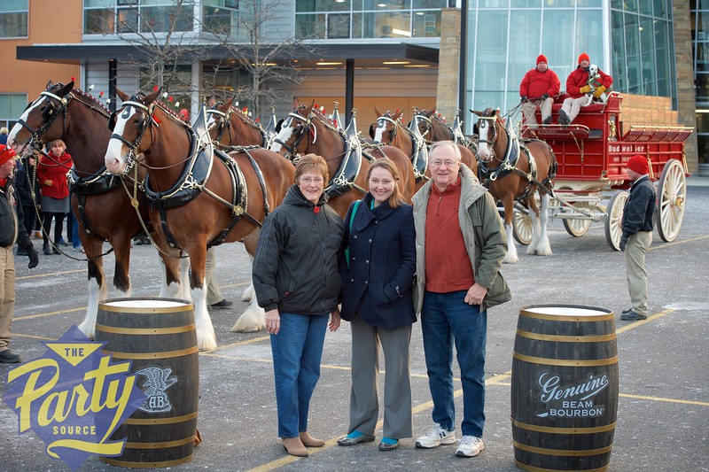 Clydesdale Portraits 245.jpg