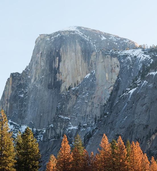 Yosemite_NYE-6.jpg