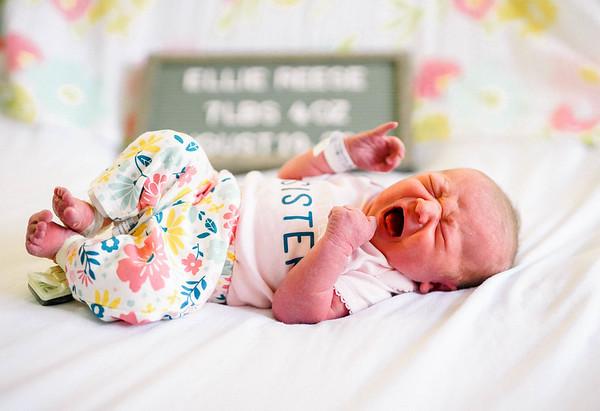 Ellie Reese || Newborn