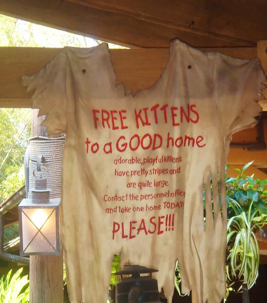 Free_Kittens.jpg