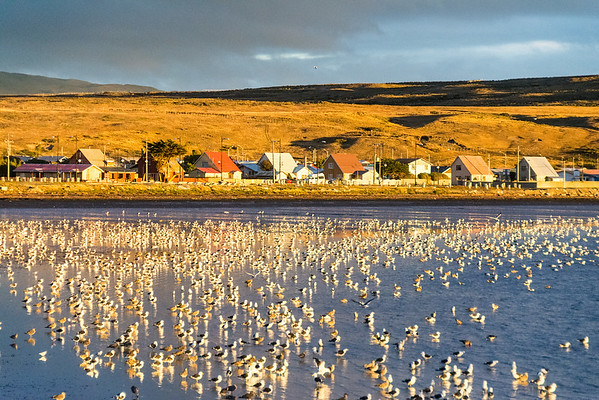 2014 Tierra del Fuego and Southern Patagonia