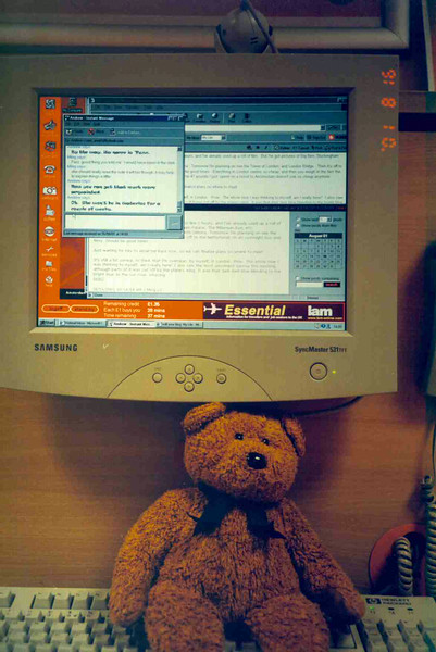 Teddy at easyEverything.jpg