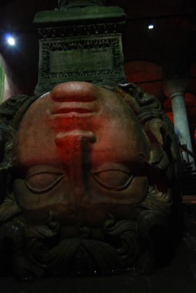Medusa head (13).JPG