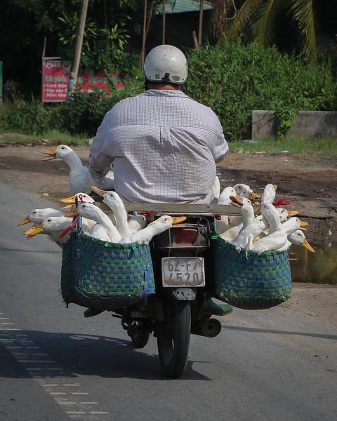Vietnam-2018-2015.jpg