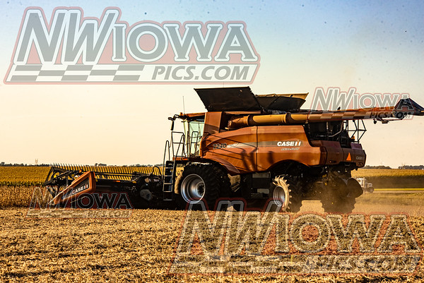 Farming 2019