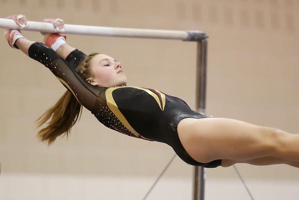 Gymnastics 2015 - 2016