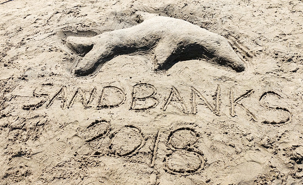 Sandbanks 2018