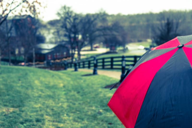 A Splash Of Rain in Bourbon County