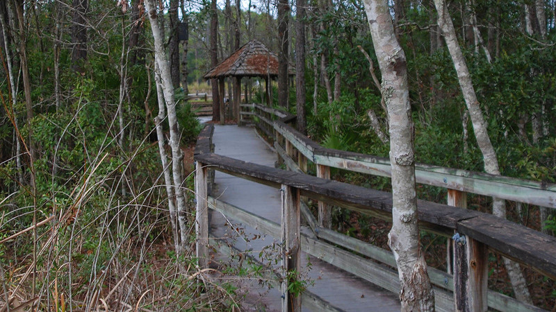 Loftin Nature Trails