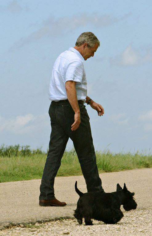 ". President Bush walks away with his dog Barney after answering questions following his defense meeting on his ranch Monday, Aug. 23, 2004, in Crawford, Texas. Bush denounced TV ads by outside groups attacking both John Kerry and himself on Monday and called for a halt to all such political efforts. ""I think they\'re bad for the system,\"" Bush said.  (AP Photo/Pablo Martinez Monsivais)"