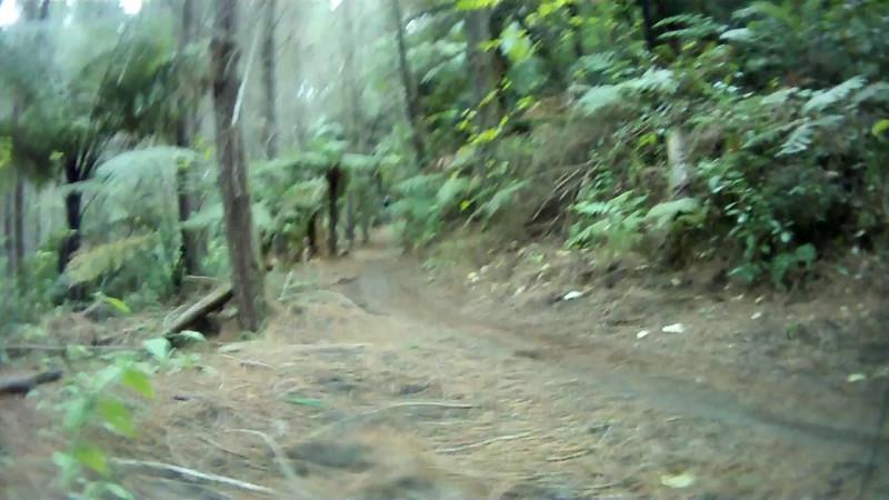 2014-08 New Zealand 1249.MOV