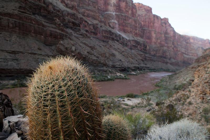 Grand Canyon October-0915.jpg