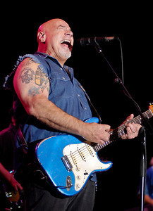 Creedence Clearwater Revisited performs
