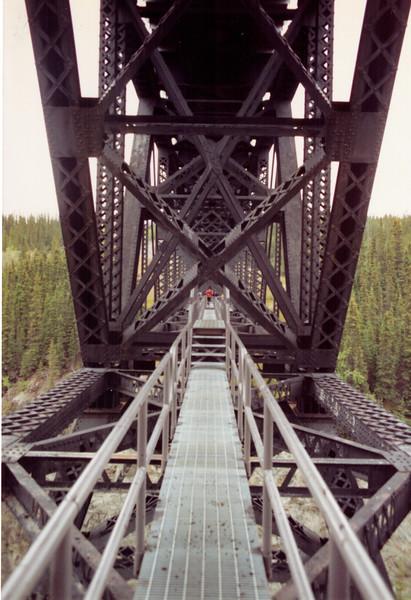 Alaska  0990 BR 88.jpeg
