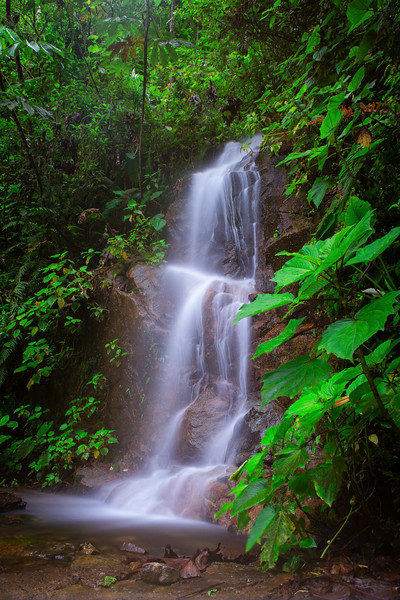 A waterfall along the road at 10,000 feet in Manu's cloud forests
