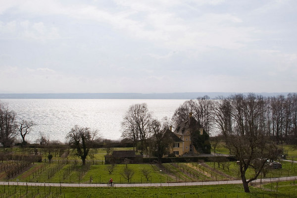 Bodensee and Black Forest Region