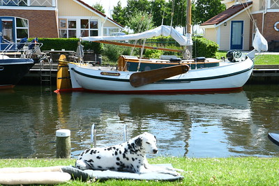 Images from folder 2009-06-vakantie Friesland