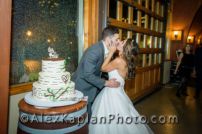 Wedding at The Conservatory in Plains Rd, Augusta, NJ - Outtakes - By Alex Kaplan Photo Video Photobooth Specialist