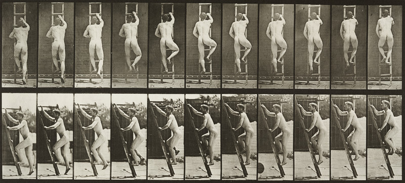 Nude man ascending a ladder (Animal Locomotion, 1887, plate 111)