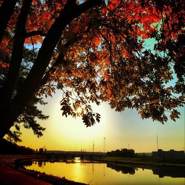 2011-10-09_1318179426.jpg