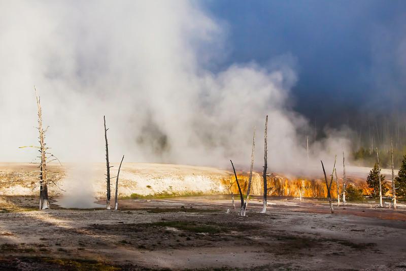Firehole Steaming.jpg