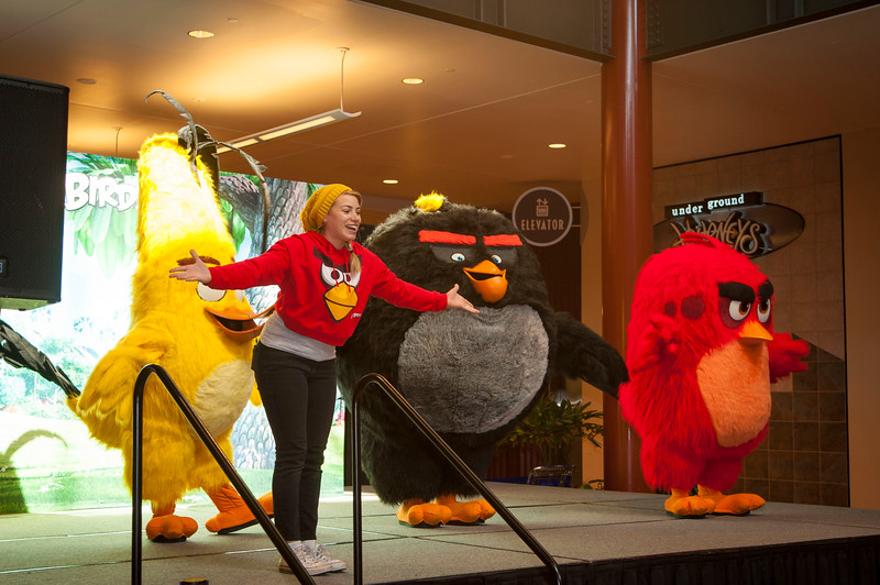 Angry Birds StoneCrest Mall 53.jpg