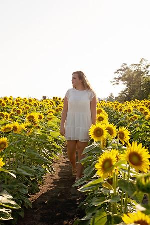 Abigail sunflowers~~~~
