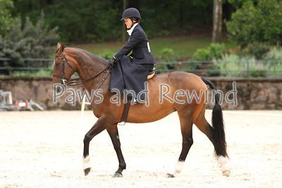Ladies Hunter Side Saddle Pleasure